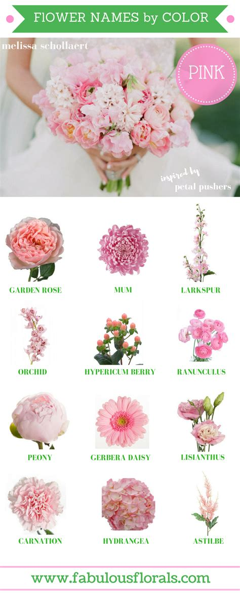 Wedding Bouquet Names by Flower Names By Color 2017 Wedding Trends Your 1
