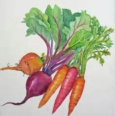 libro watercolour fruit vegetable 1000 images about watercolour fruits n vegetable on watercolors pears and food