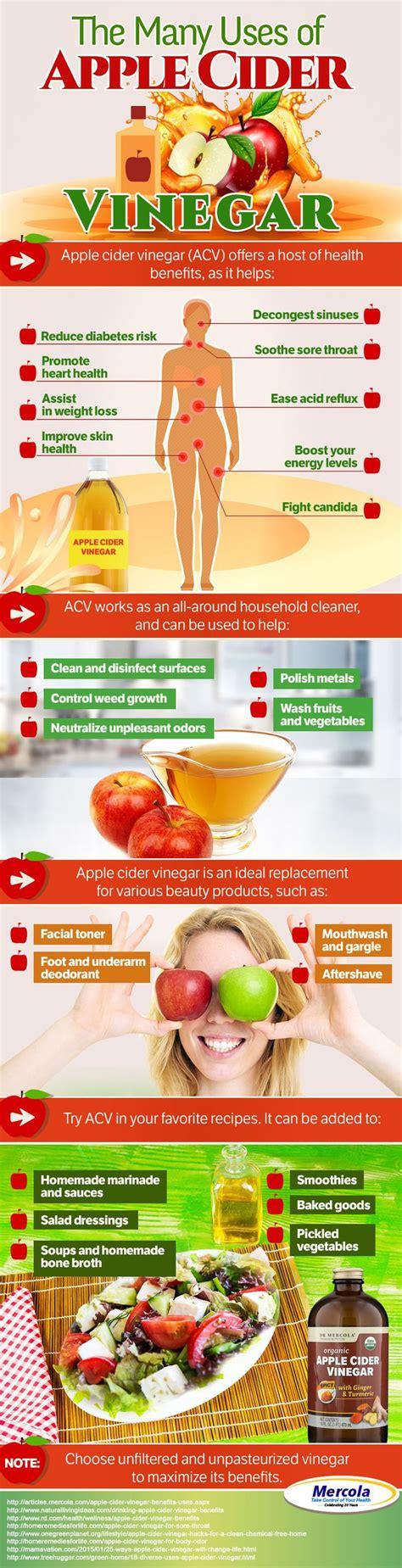 Apple Cider Vinegar Tonic 60 Detox Meth by Best 25 Apple Cider Vinegar Benefits Ideas On