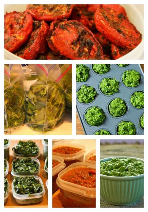 Tips For Freezing Fresh Herbs Garden Tomatoes And Freezing Fresh Vegetables From The Garden