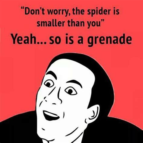 Afraid Of Spiders Meme - when people say not to be afraid of spiders you don t