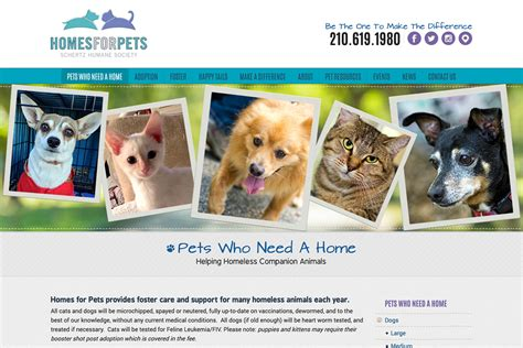 adoption in san antonio homes for pets pet adoption san antonio schertz humane upcomingcarshq