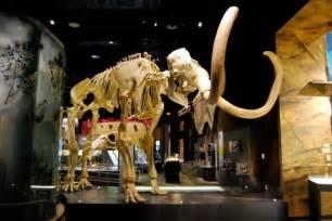 Museum Las Vegas Las Vegas Museums 10best Museum Reviews
