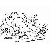 Triceratops Para Colorear  Im&225genes Y Fotos
