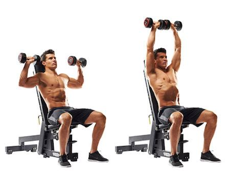 seated shoulder dumbbell press the 16 best shoulder exercises to destroy your delts and