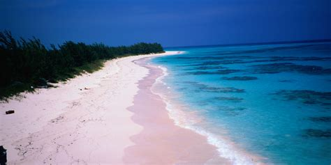 pink sand beach most colorful beaches in the world huffpost