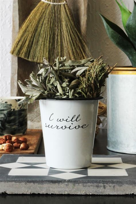 plant pots mad   house
