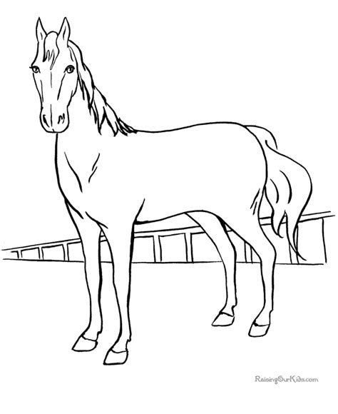 coloring pages animals horses coloring pages animals