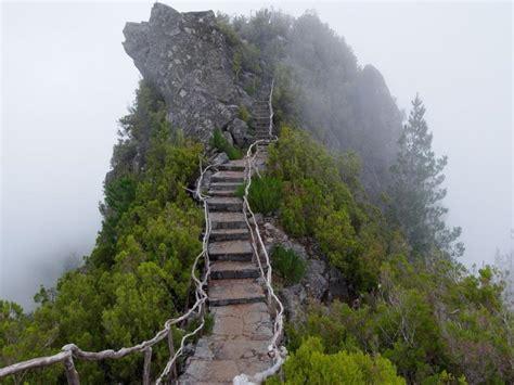 hd mountains nature trees path fog desktop backgrounds