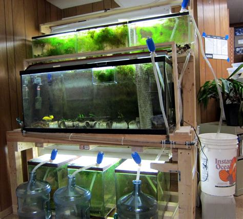 fish room water change system easy water change system sonny s fish room