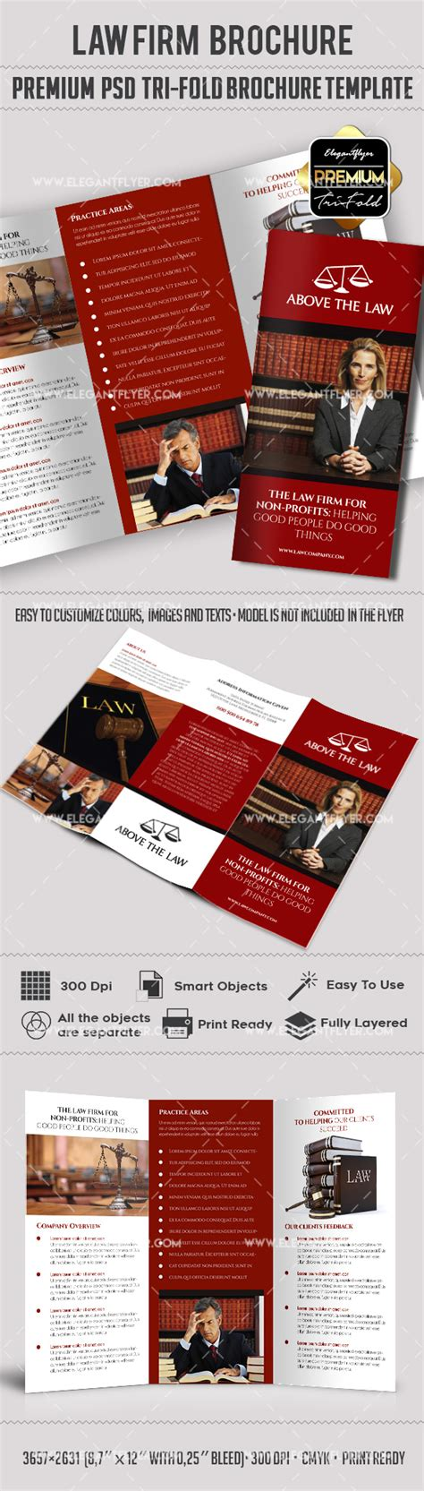 law company premium tri fold psd brochure template by