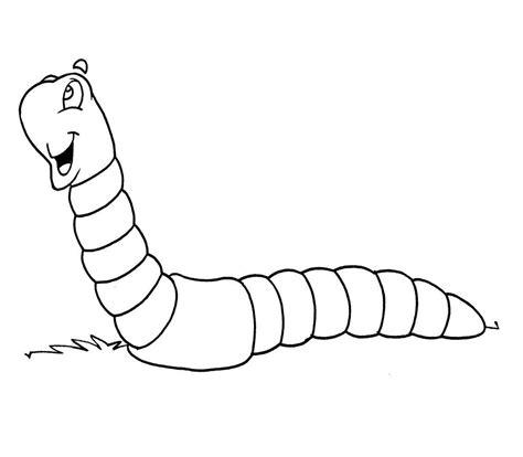 imagenes de animales invertebrados para dibujar fichas de insectos