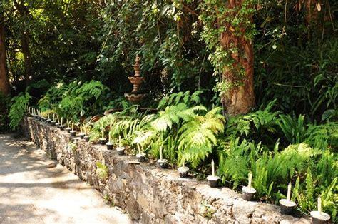 mexican garden mexican gardens outdoor