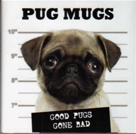 pug mmo ectmmo mmo the adventures of kaozz wow pug new dungeon system