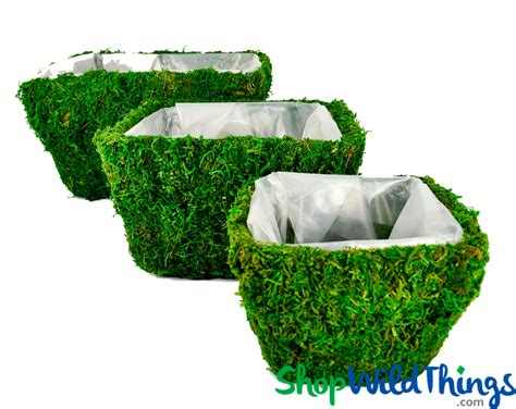 Moss Planter Liners by Moss Covered Planter Boxes Set Of 3 Floral And Event