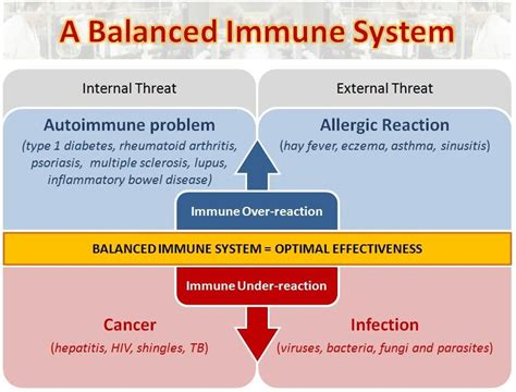 Can Detox Weaken Your Immune System by Why Do I Such A Weak Immune System Siowfa13