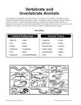 vertebrate and invertebrate animals printable 3rd 5th