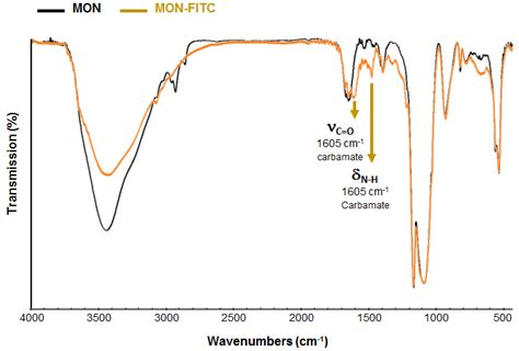 Figure Profile 16 figure s20 ftir spectra comparison between mon and mon fitc nps