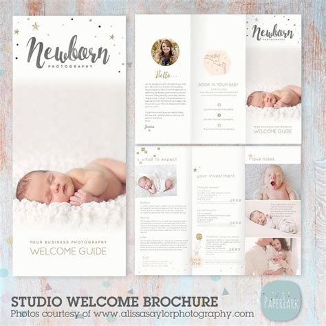 Wedding Photography Brochure Wording by Newborn Trifold Brochure Flyer Photography Guide Dl Size