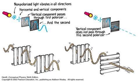 what does polarized light day8 polarization