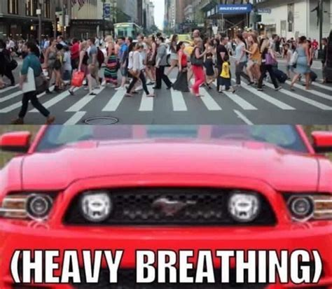 Ford Mustang Memes - post something about the user above you page 7 9th