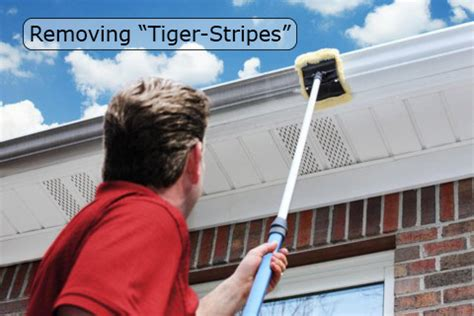 tiger gutters and siding quot rinse quot pressure washing services roof rinse run