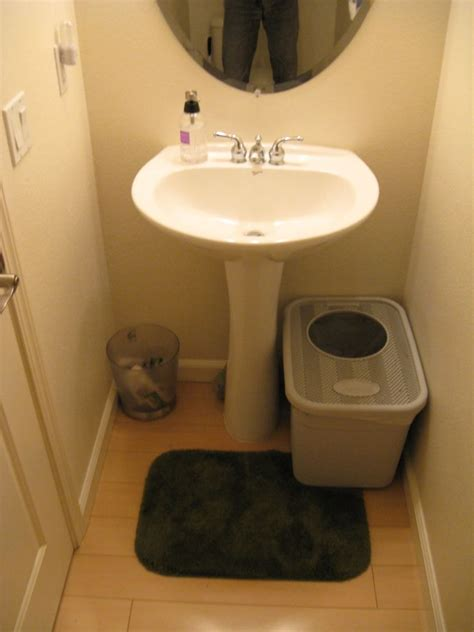 Litter Box Bathroom by Guest Bathroom Sink And Litter Box