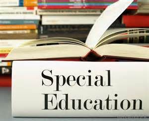 what are the different types of special education students
