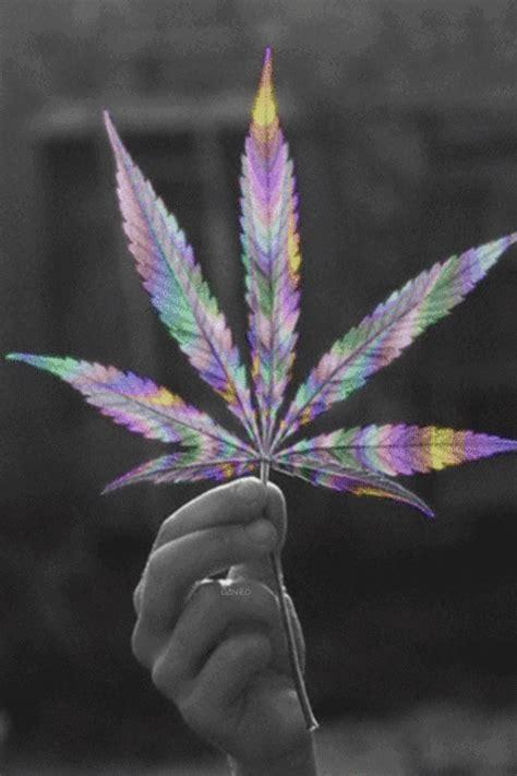 imagenes weed love pot leaf on tumblr
