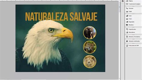 tutorial photoshop cs5 romana crear pdf interactivo en indesign funnydog tv