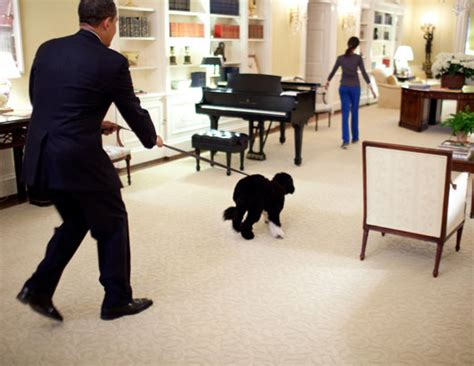 obama white house tour pictures inside the white house google search the