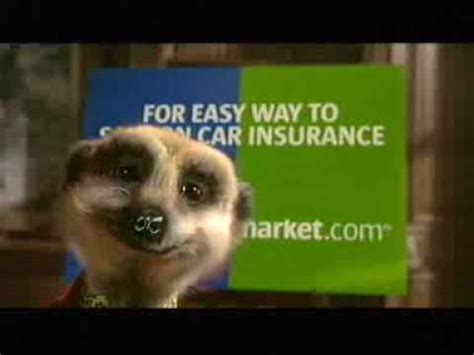 Compare The Market Insurance by Official Compare The Meerkat Advert By Aleksandr Orlov