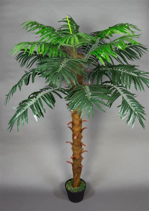 Palmen Kaufen 140 by Ph 246 Nixpalme 140cm Zj Kunstpalmen K 252 Nstliche Palmen