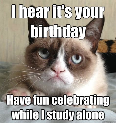 Grumpy Cat Happy Birthday Meme - the gallery for gt funny cat meme birthday