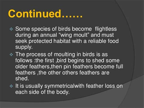 moulting in birds