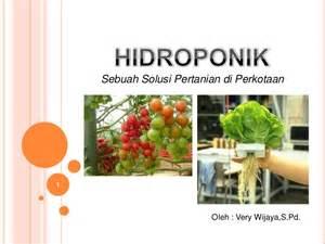 tips berkebun hidroponik mengenal hidroponik untuk pemula share the hidroponik solusi pertanian di perkotaan