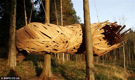 design students build impressive cocoon  tree house