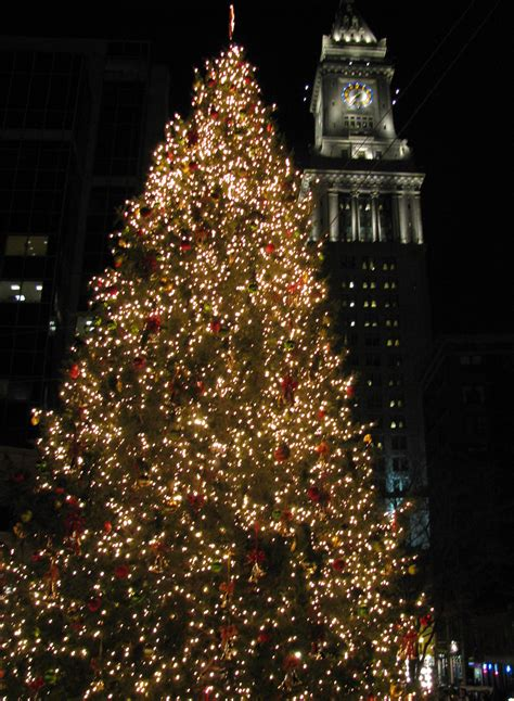 file christmas tree near the quincy market jpg wikimedia