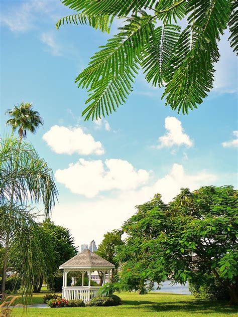 Davis Island Garden Club by Ta Florida Photo Wedding Bells Your Waterfront Gazebo