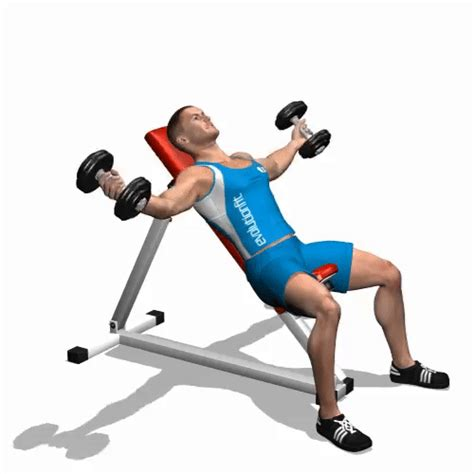 incline bench flyes how to perform incline dumbbell flyes chest exercises