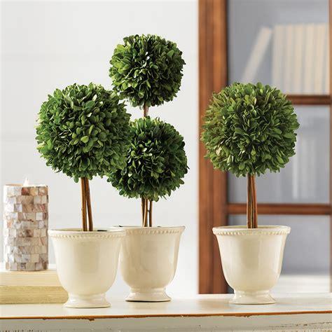 boxwood topiary decor ball 6 inches 3302400 new raz home preserved boxwood ball topiaries gump s