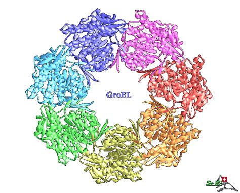 protein 3d modeling software analysis tools protein tertiary structure