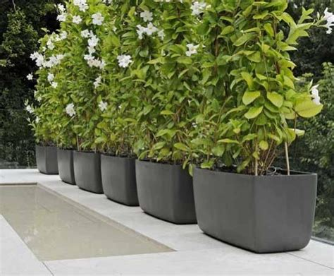 External Planters by Boulevard Sculptural Fibre Reinforced Cement Planters