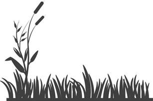 free vector graphic flowers grass silhouette garden