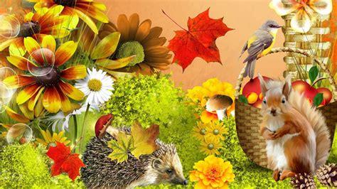 fall flowers fall flowers wallpapers wallpaper cave