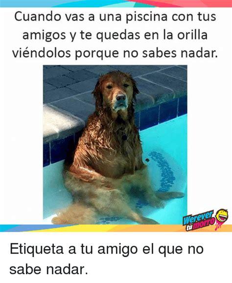 cuando vas en el carro con tus amigos megadiversion 25 best memes about piscina piscina memes