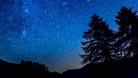 tree silhouette against starry night sky harmonia time lapse purple night sky stars over mountain and tree
