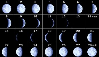 Why Calendar Is Different Does The Moon Look The Same All The World