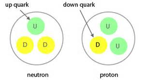Types Of Quarks Found In Protons And Neutrons Scientific Explorer November 2012