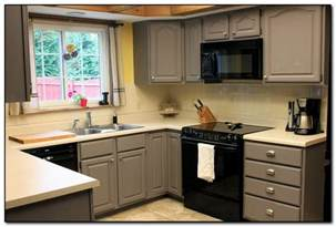 Colorful Kitchen Cabinets Ideas Painted Kitchen Cabinet Colors Ideas Monsterlune